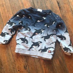 HM Killer Whale 🐋 Sweatshirt
